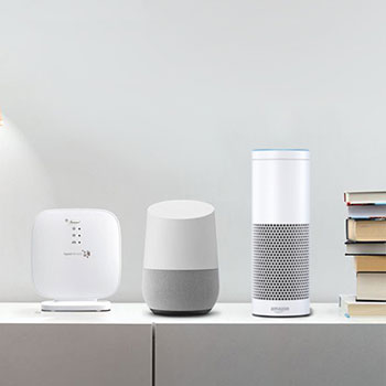 Amazon Alexa, Google Home, Philips Hue