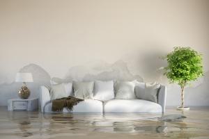 Wasserschaden Wohnzimmer Sofa